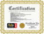 FIDO UAF Certificate 20170104.png