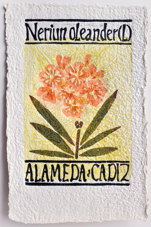 Flora de la Alameda