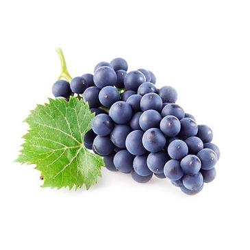 purple-grapes-500x500.jpg