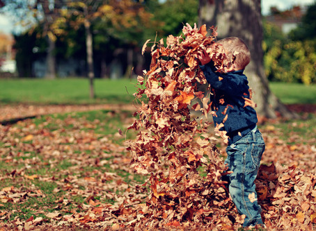 10 Fall Safety Tips to Keep Children and Parents Safe