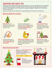 Christmas-tree-Info-graphics
