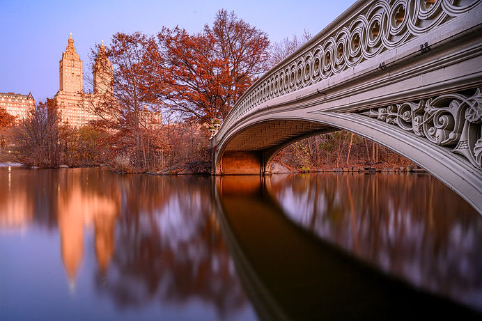 Andympics NYC-.jpg