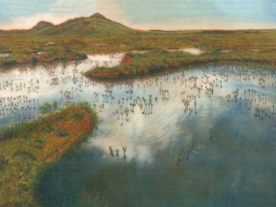Peatbog Peninsula