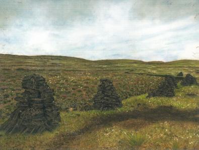 Cliff Peat Stacks, The North Coast