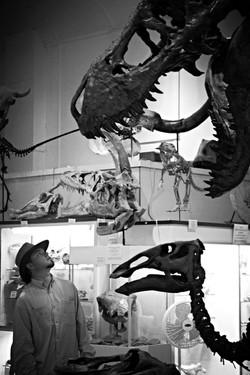 Stan the T-Rex