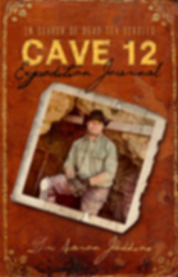 DSS book cover.jpg