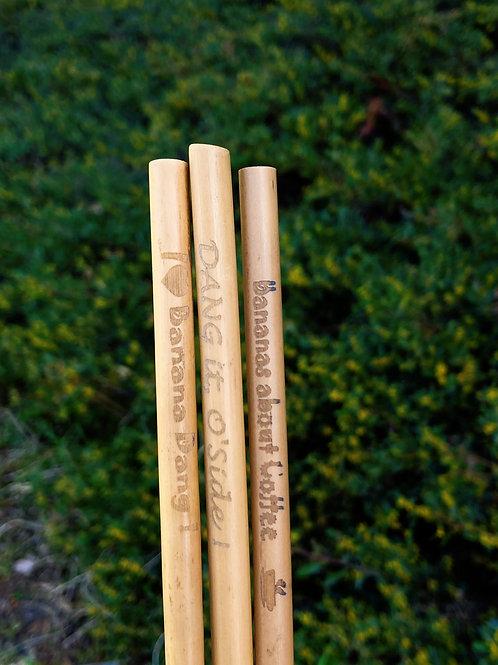 Bamboo Straws (3-pack)