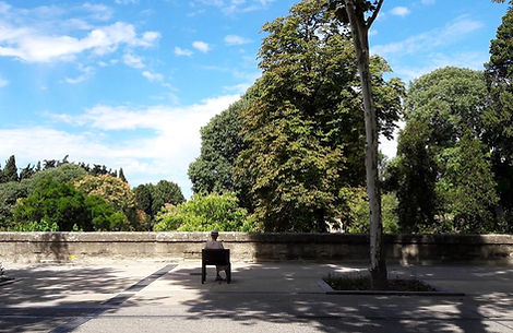 Edistart Montpellier Jardin des plantes