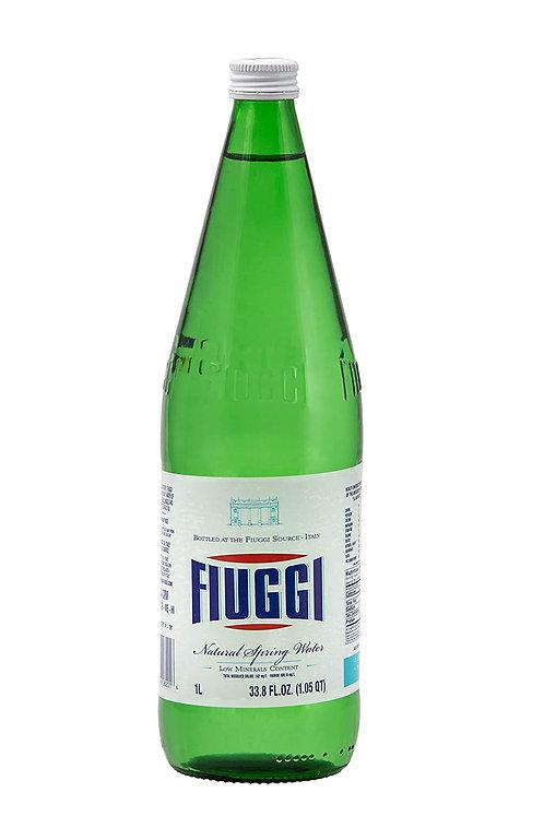 FIUGGI NATURAL 12/1 LITER