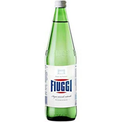 FIUGGI Natural Glass 24/500ml