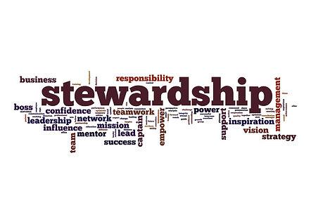 stewardship-ESG-scaled.jpg