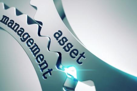 La gestión de activos en los programas de protección