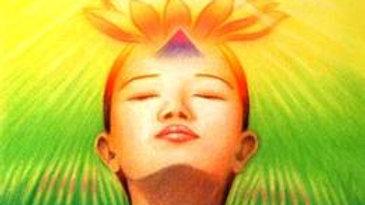 Initiation Lumiere solaire
