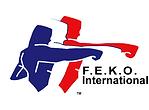 FEKO Logo.png