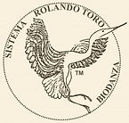 logo-Biodanza-300x286_edited.jpg