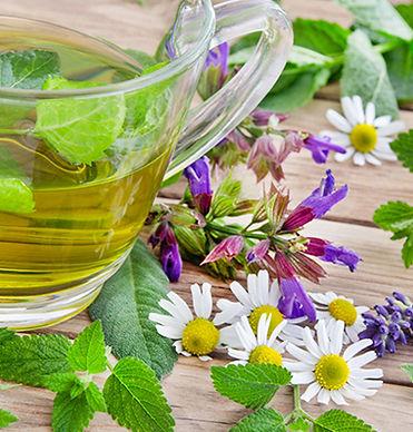 tea botanicals.jpg