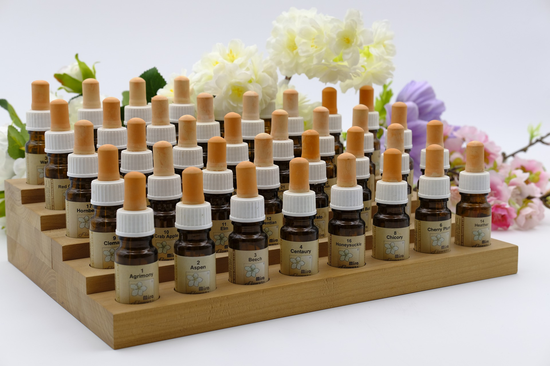 Séance fleurs de Bach - Elixirs Floraux