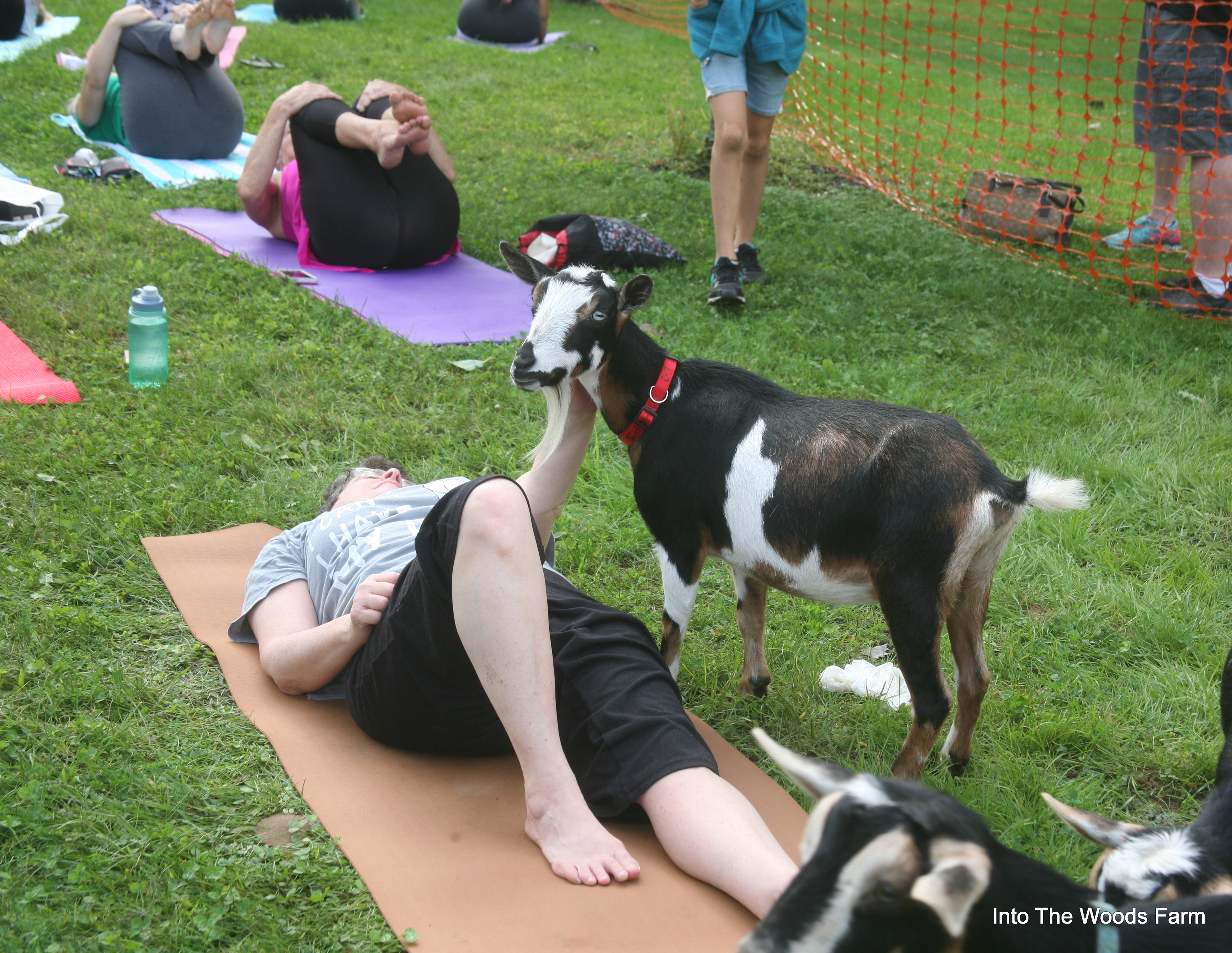 Schmaltz Yoga Event