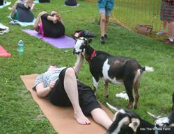 Schmaltz Yoga Event