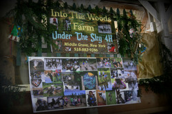 Into The Woods Farm 4H