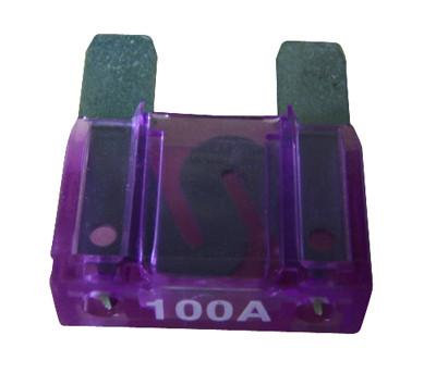 Fuse 100 amp [166013-AM]