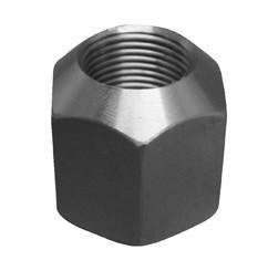 Push Rod Nut [386120-AM]