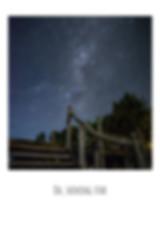 3_edited.jpg