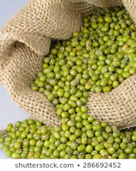 mung-bean-green.jpg