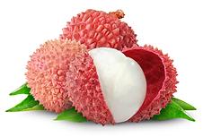 scrimad lychee