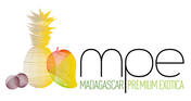 logos MPE final.png