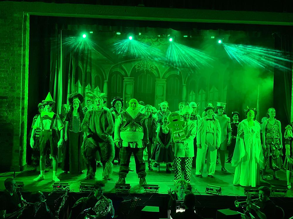 Viva's pre-lockdown show of 2020 was Shrek at Ely Maltings