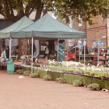 Ely Market