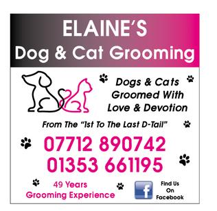 Elaine's Grooming