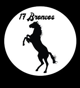 17 Broncos.png