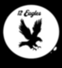 12 Eagles.png