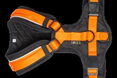 Geschirr orange / schwarz