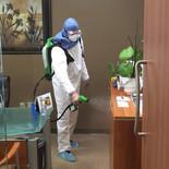 Disinfection 25.jpg