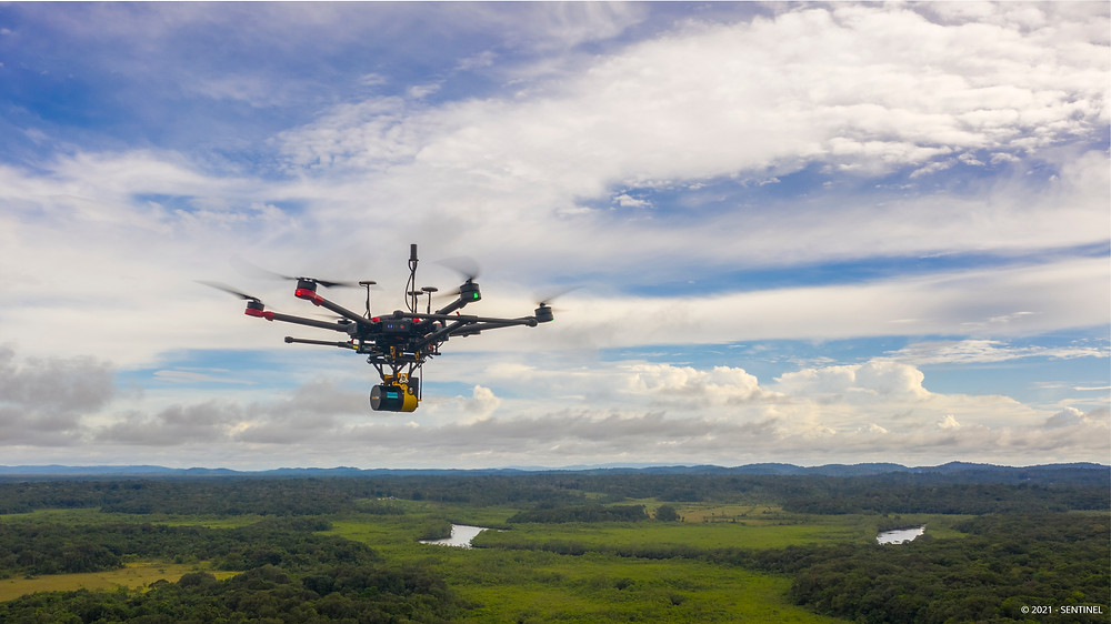 lasergrammetry with a drone in Guyane for CNES