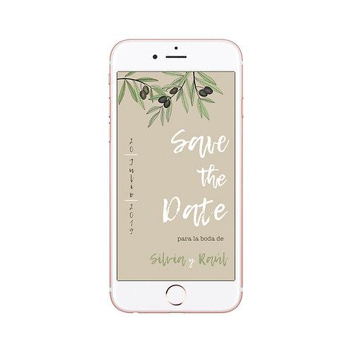 Save the date, reserva fecha, invitaciones de olivos, invitaciones de boda con olivos, invitaciones cuadradas