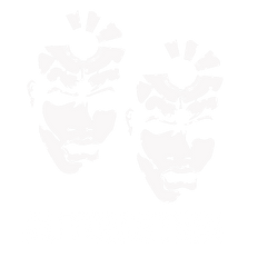 Automation Logo SMALL.png