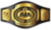 MM champion belt.png