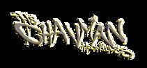 CHAVMAN TITLE websize.png
