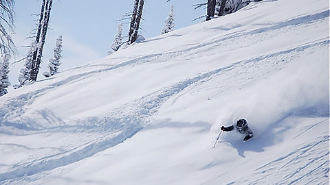 BBpowder-skier-2--callout.jpg