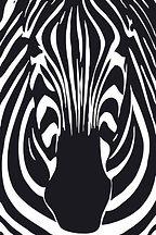 Zebra New Logo.jpg