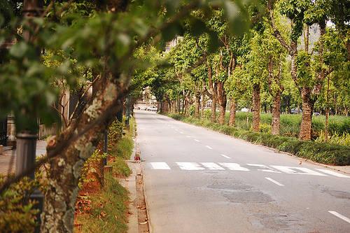 Avenida Koeler