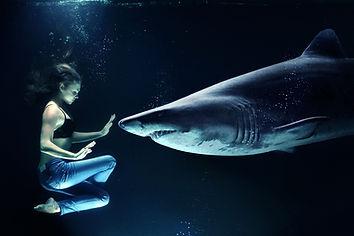 Nager avec Shark