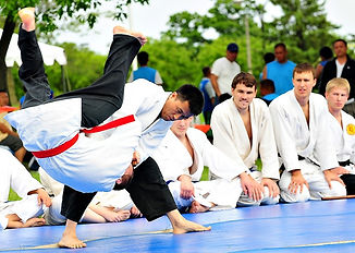 Hapkido-Picture-800x570.jpg