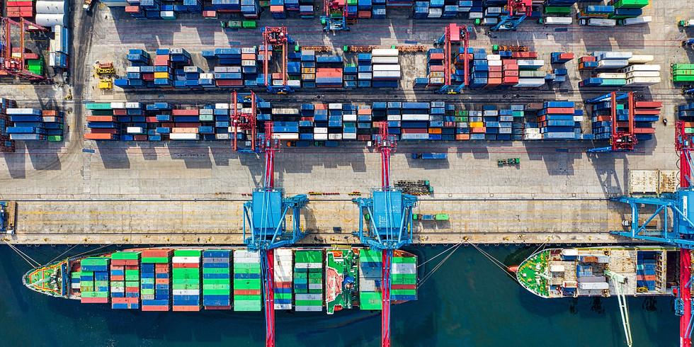 Webinar N4. COVID-19 & International Trade
