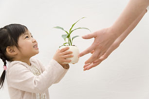 家政婦, 紹介所, 熊本, 北区, ベビーシッター, 介護サービス, ホームヘルパー, 家事代行