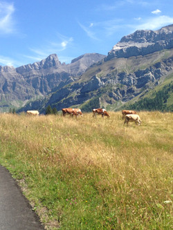 Les Diablerets in Summer